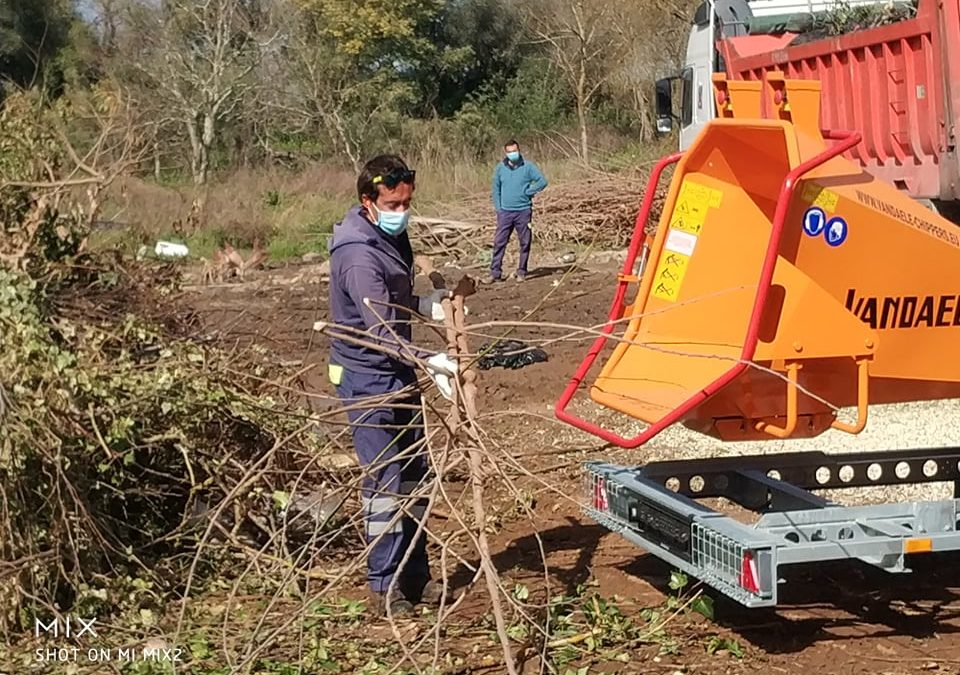 Viana do Alentejo: Formação para bio triturador