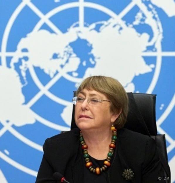 """ONU: Relatório das Nações Unidas refere """"impacto catastrófico"""" nos direitos humanos pelo uso da Inteligência Artificial"""